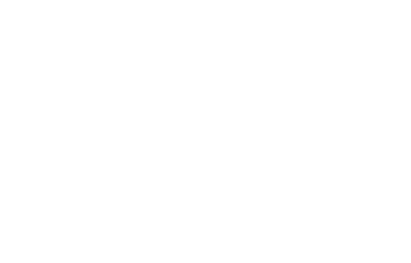 Hannoverkicker Team Chicago
